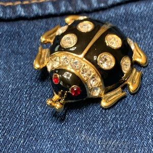 Jean Jacket Pin Insect Bug vintage brooch